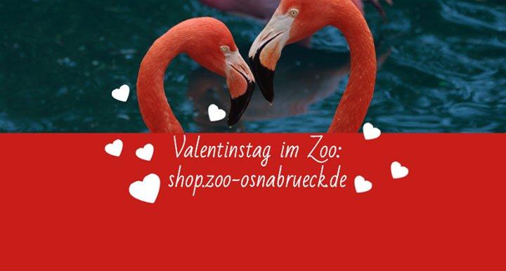 Party - Valentinstag im Zoo Osnabrück - Zoo Osnabrück in Osnabrück ...