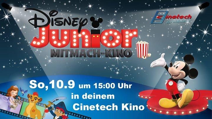 Rheine Kino Cinetech