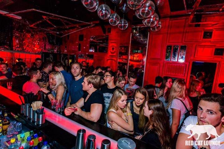 Mainz single party