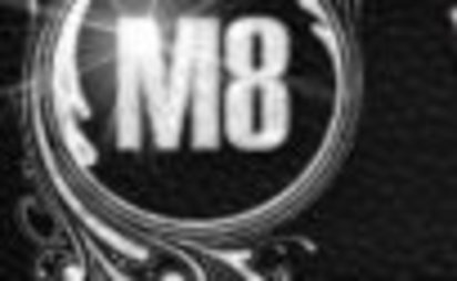 Schwerin M8